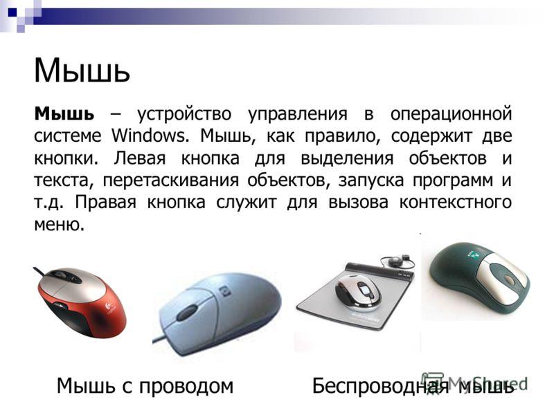 Мышь Мышь с проводомБеспроводная мышь Мышь – устройство управления в операционной системе Windows. Мышь, как правило, содержит две кнопки. Левая кнопка для выделения объектов и текста, перетаскивания объектов, запуска программ и т.д. Правая кнопка сл