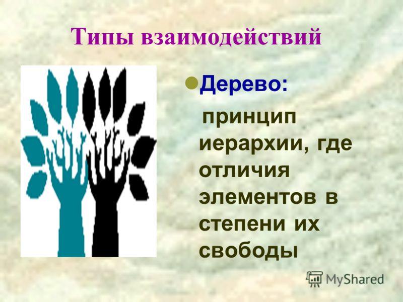 Типы взаимодействий Дерево: принцип иерархии, где отличия элементов в степени их свободы