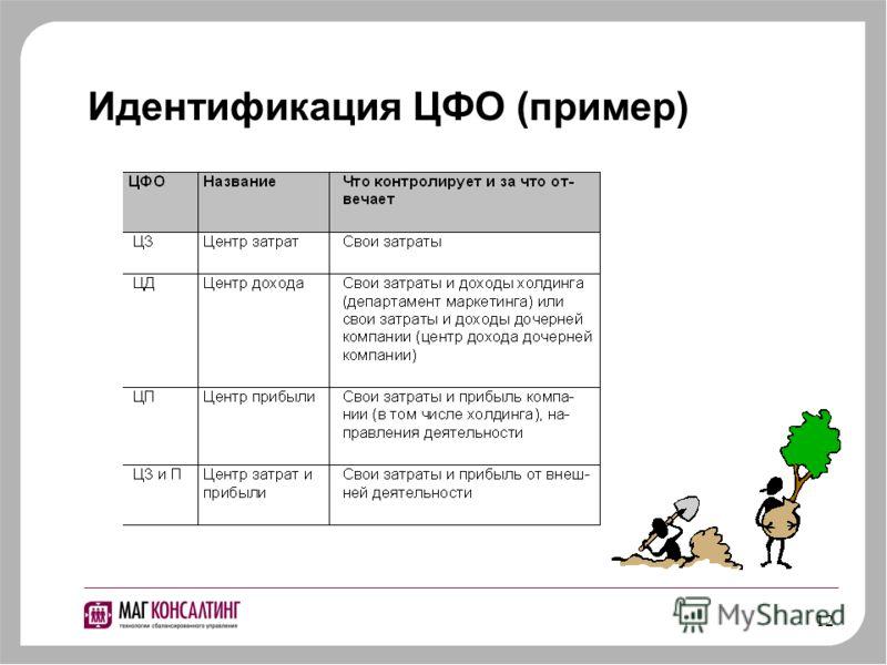 12 Идентификация ЦФО (пример)