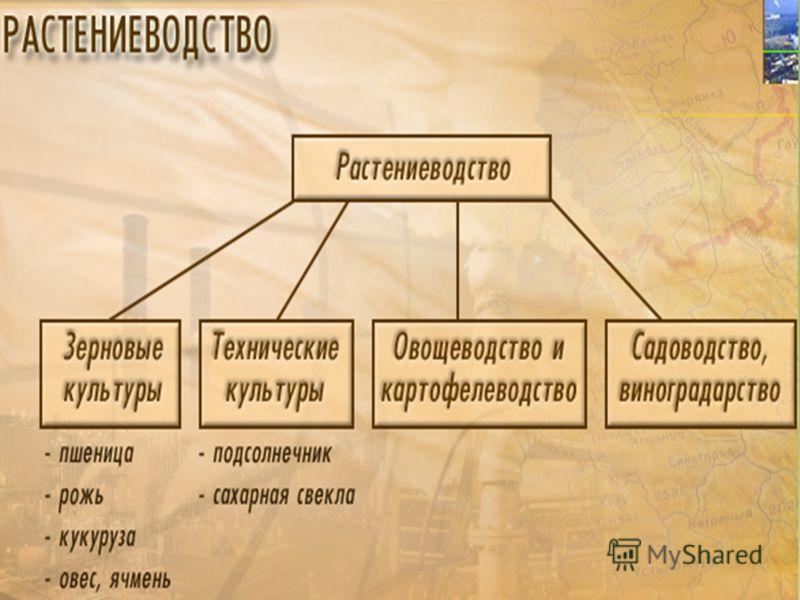 ЛИБрежнев Ленинским курсом Том 3 19701972