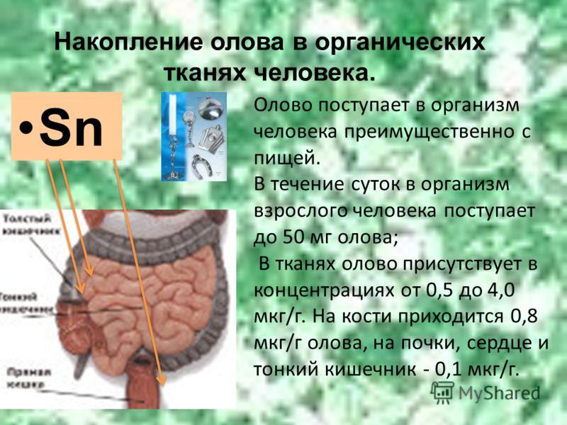 Накопление олова в органических тканях человека. Sn Олово поступает в организм человека преимущественно с пищей. В течение суток в организм взрослого человека поступает до 50 мг олова; В тканях олово присутствует в концентрациях от 0,5 до 4,0 мкг/г.