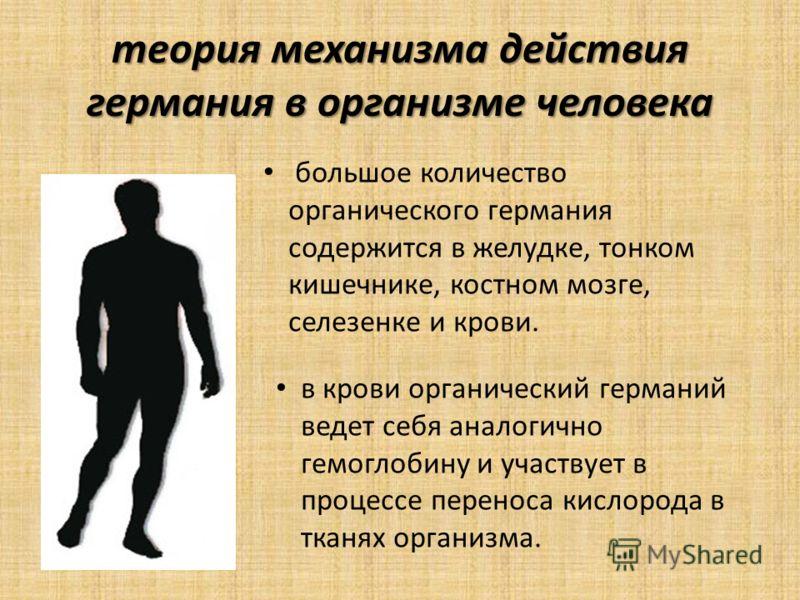 теория механизма действия германия в организме человека большое количество органического германия содержится в желудке, тонком кишечнике, костном мозге, селезенке и крови. в крови органический германий ведет себя аналогично гемоглобину и участвует в