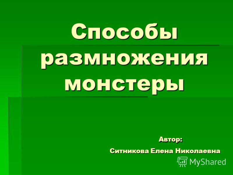 Способы размножения монстеры Автор: Ситникова Елена Николаевна