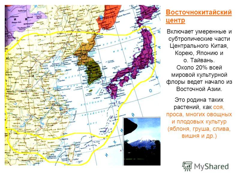 Восточнокитайский центр Включает умеренные и субтропические части Центрального Китая, Корею, Японию и о. Тайвань. Около 20% всей мировой культурной флоры ведет начало из Восточной Азии. Это родина таких растений, как соя, проса, многих овощных и плод