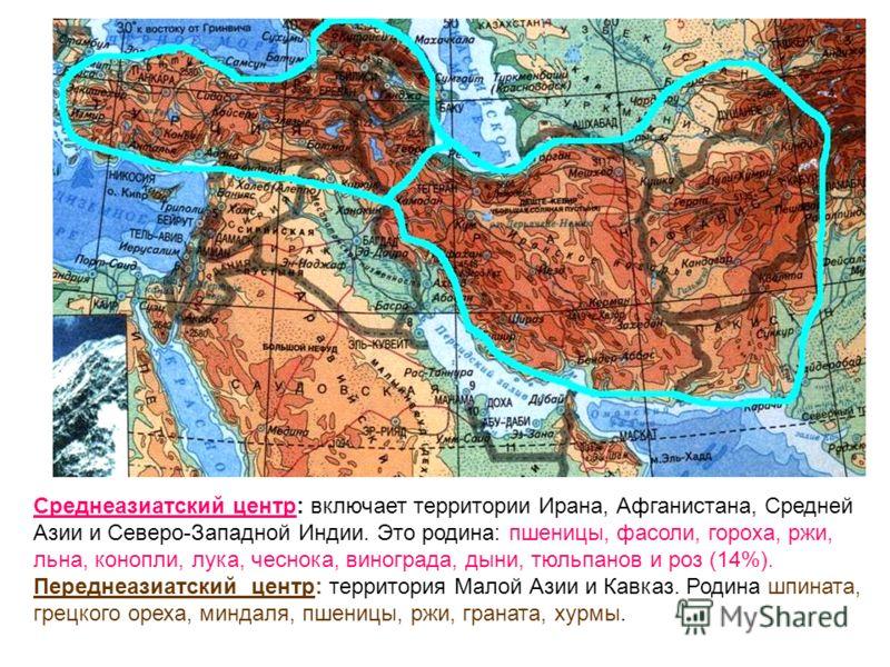 Среднеазиатский центр: включает территории Ирана, Афганистана, Средней Азии и Северо-Западной Индии. Это родина: пшеницы, фасоли, гороха, ржи, льна, конопли, лука, чеснока, винограда, дыни, тюльпанов и роз (14%). Переднеазиатский центр: территория Ма