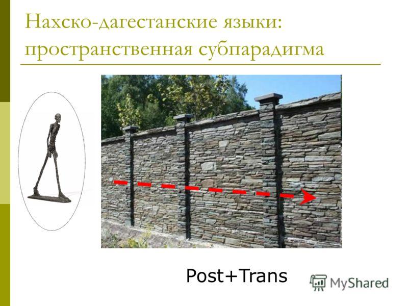 7 Нахско-дагестанские языки: пространственная субпарадигма Post+Trans