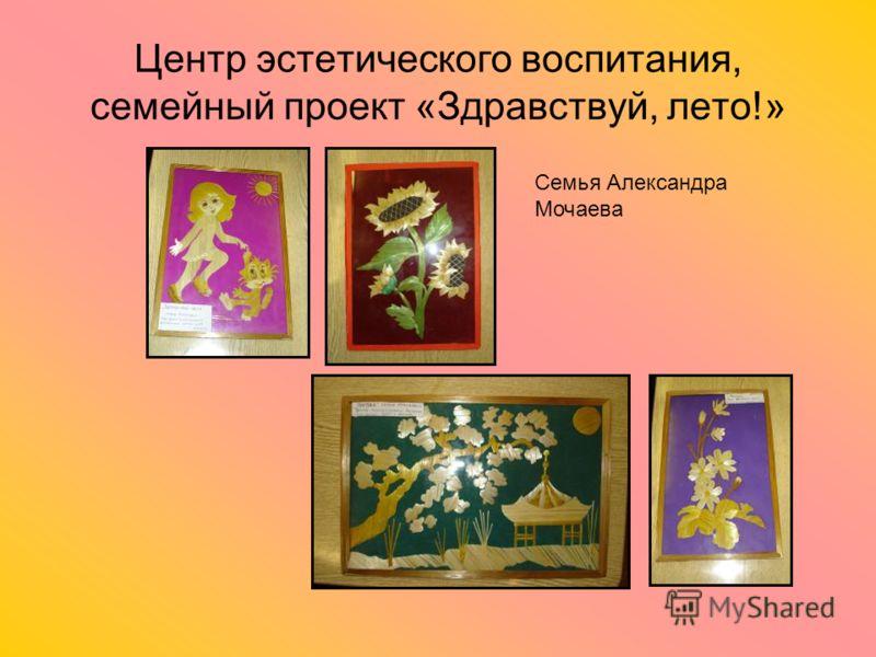 Центр эстетического воспитания, семейный проект «Здравствуй, лето!» Семья Александра Мочаева