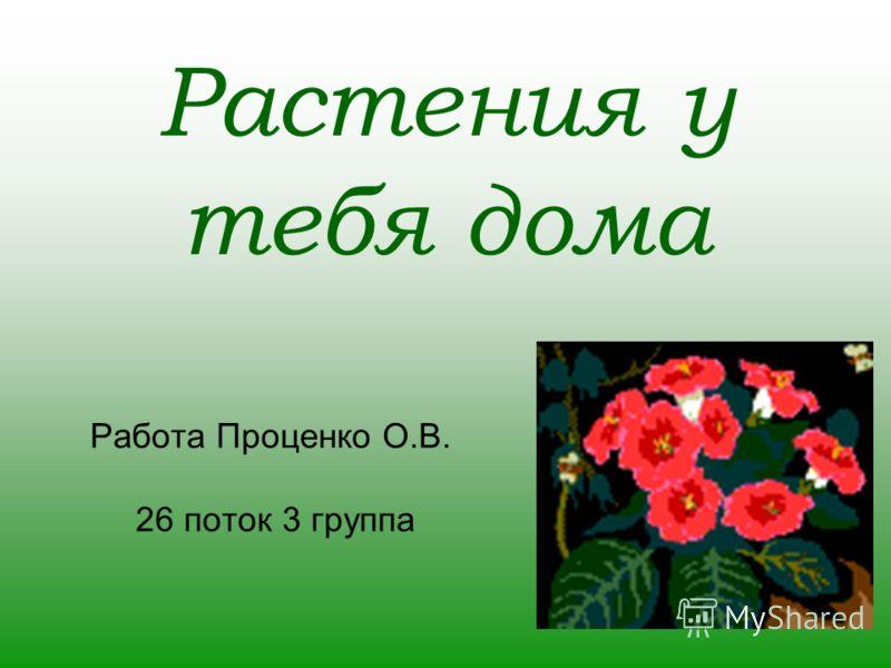 Растения у тебя дома Работа Проценко О.В. 26 поток 3 группа