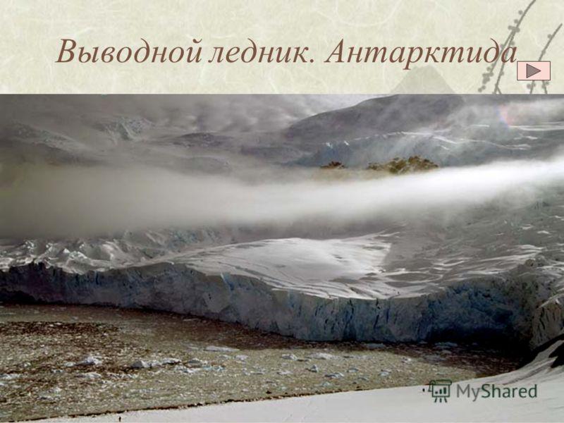 Покровный ледник Антарктида