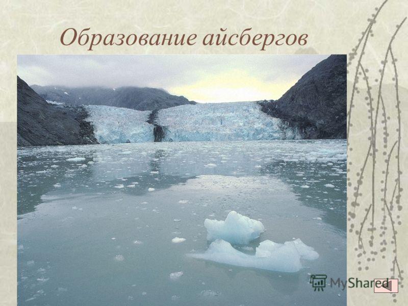 Шельфовый ледник Антарктида