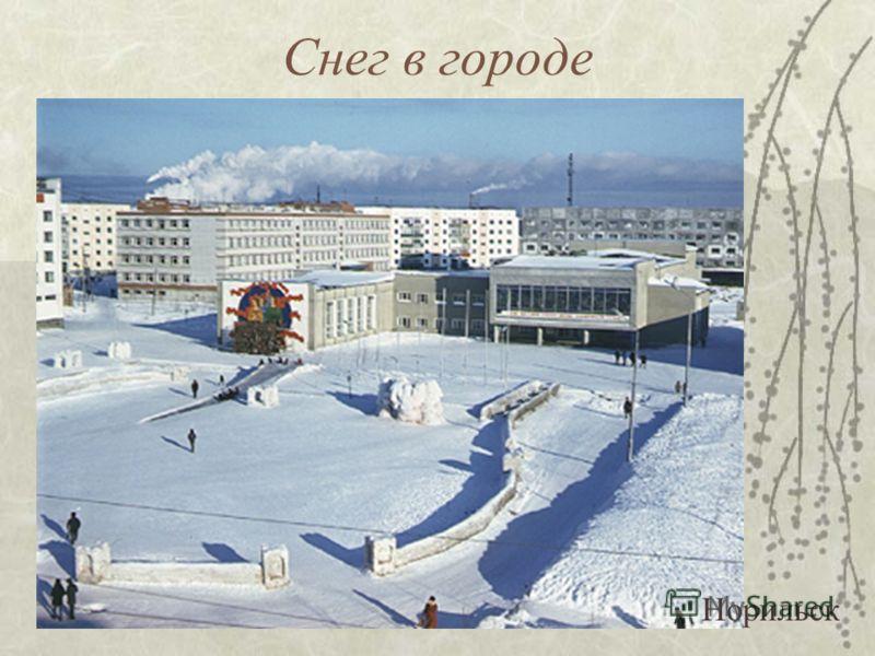 Снежный дом Хельсинки.Снежная церковь на Сенатской площади