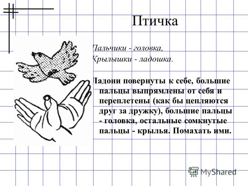 Пальчики - головка, Крылышки - ладошка. Ладони повернуты к себе, большие пальцы выпрямлены от себя и переплетены (как бы цепляются друг за дружку), большие пальцы - головка, остальные сомкнутые пальцы - крылья. Помахать ими. Птичка