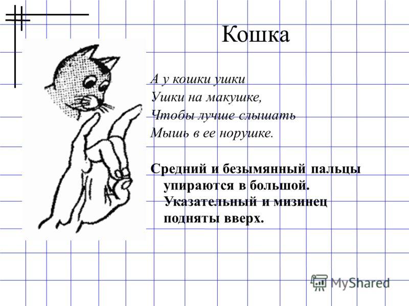 А у кошки ушки Ушки на макушке, Чтобы лучше слышать Мышь в ее норушке. Средний и безымянный пальцы упираются в большой. Указательный и мизинец подняты вверх. Кошка