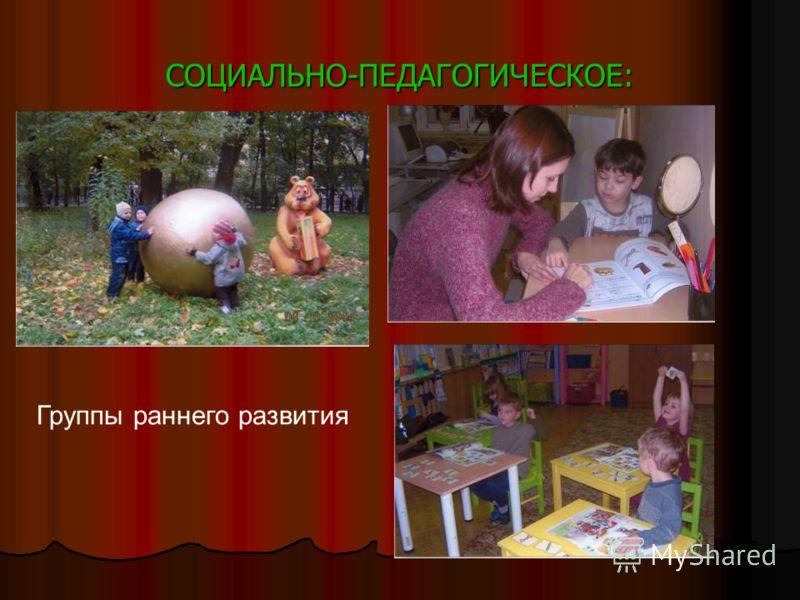 СОЦИАЛЬНО-ПЕДАГОГИЧЕСКОЕ: Группы раннего развития