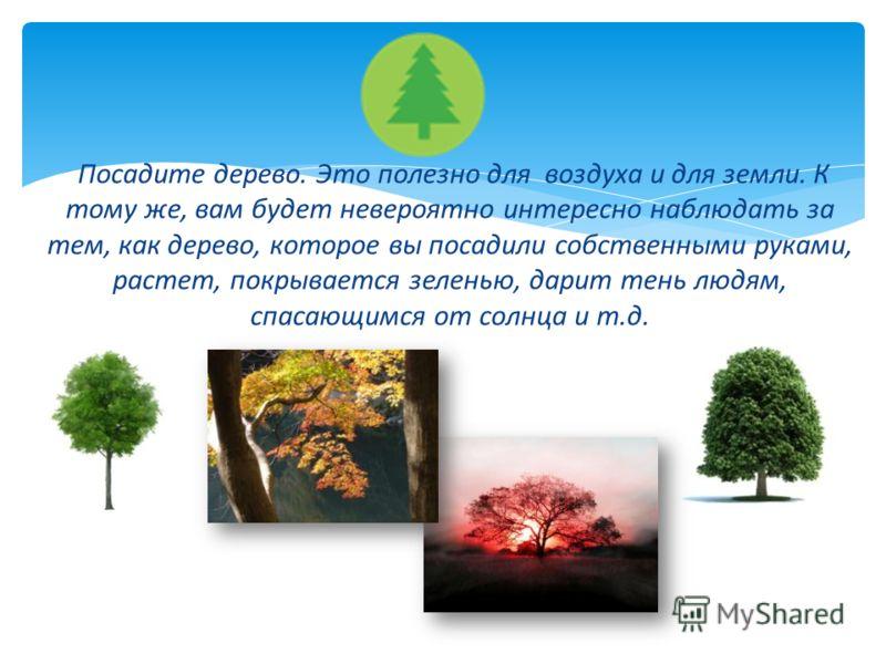 Посадите дерево. Это полезно для воздуха и для земли. К тому же, вам будет невероятно интересно наблюдать за тем, как дерево, которое вы посадили собственными руками, растет, покрывается зеленью, дарит тень людям, спасающимся от солнца и т.д.