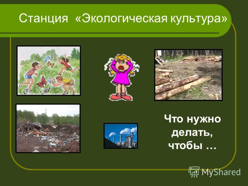 Станция «Экологическая культура» Что нужно делать, чтобы …