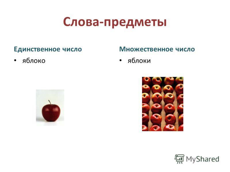 Слова-предметы Единственное число яблоко Множественное число яблоки