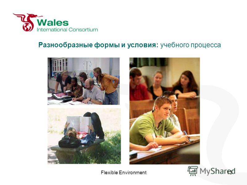 Flexible Environment13 Разнообразные формы и условия: учебного процесса