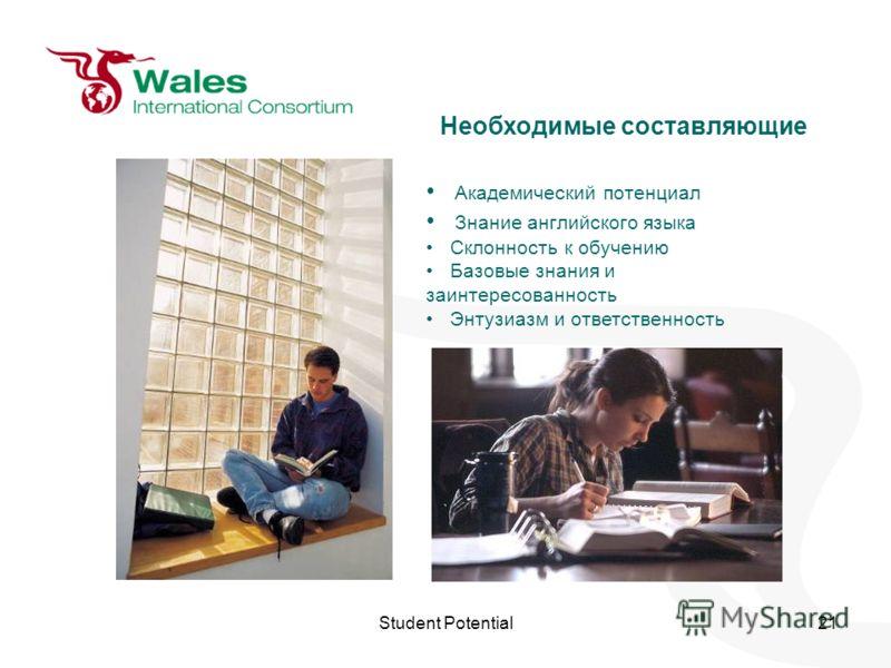 Student Potential21 Необходимые составляющие Академический потенциал Знание английского языка Склонность к обучению Базовые знания и заинтересованность Энтузиазм и ответственность