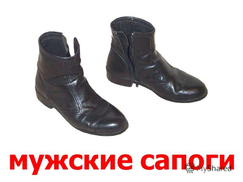 женские cапоги Женские cапоги.