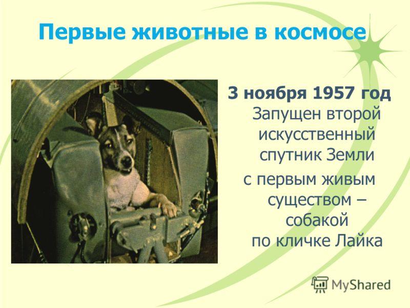 Первые животные в космосе 3 ноября 1957 год Запущен второй искусственный спутник Земли с первым живым существом – собакой по кличке Лайка