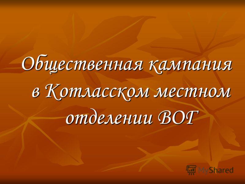 Общественная кампания в Котласском местном отделении ВОГ