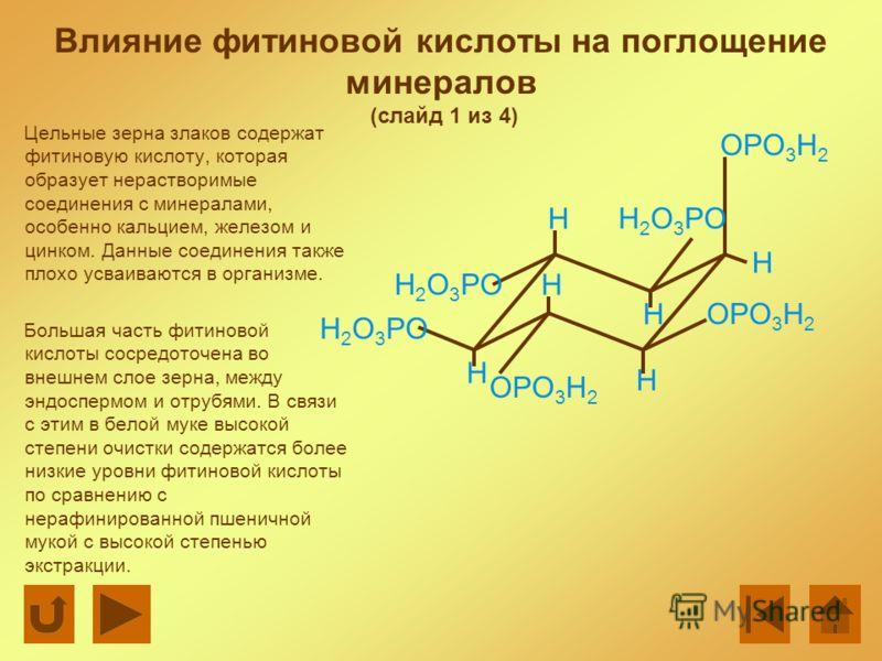 Влияние фитиновой кислоты на поглощение минералов (слайд 1 из 4) Цельные зерна злаков содержат фитиновую кислоту, которая образует нерастворимые соединения с минералами, особенно кальцием, железом и цинком. Данные соединения также плохо усваиваются в