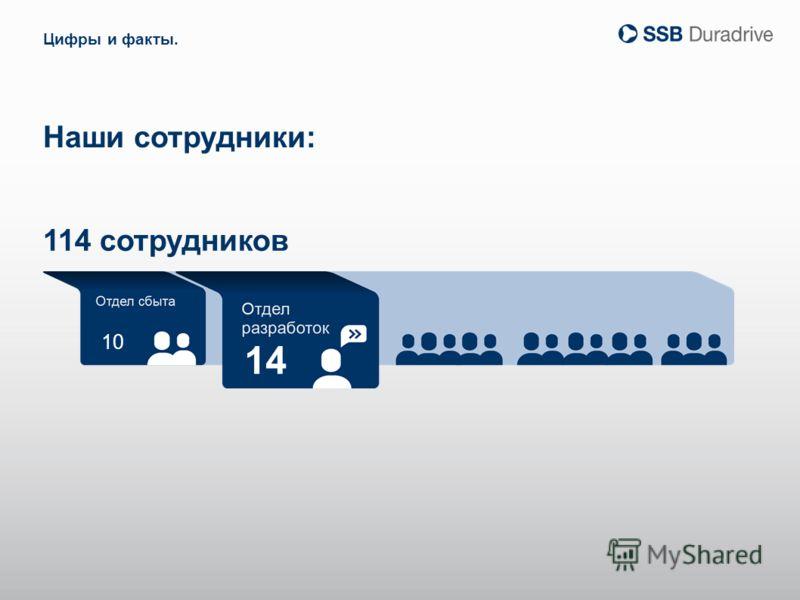 10 14 Наши сотрудники: Цифры и факты. 114 сотрудников