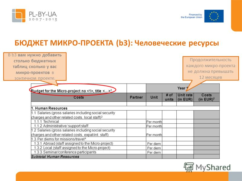 БЮДЖЕТ МИКРО-ПРОЕКТА (b3): Человеческие ресурсы Budget for the Micro-project no, title 1 Year 1 CostsPartnerUnit # of units Unit rate (in EUR) Costs (in EUR) 2 1. Human Resources 1.1 Salaries (gross salaries including social security charges and othe
