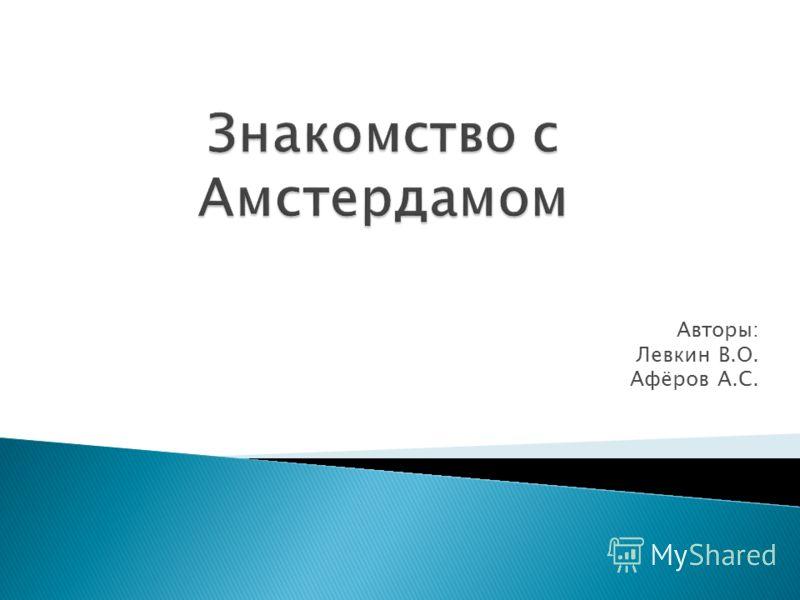 Авторы: Левкин В.О. Афёров А.С.