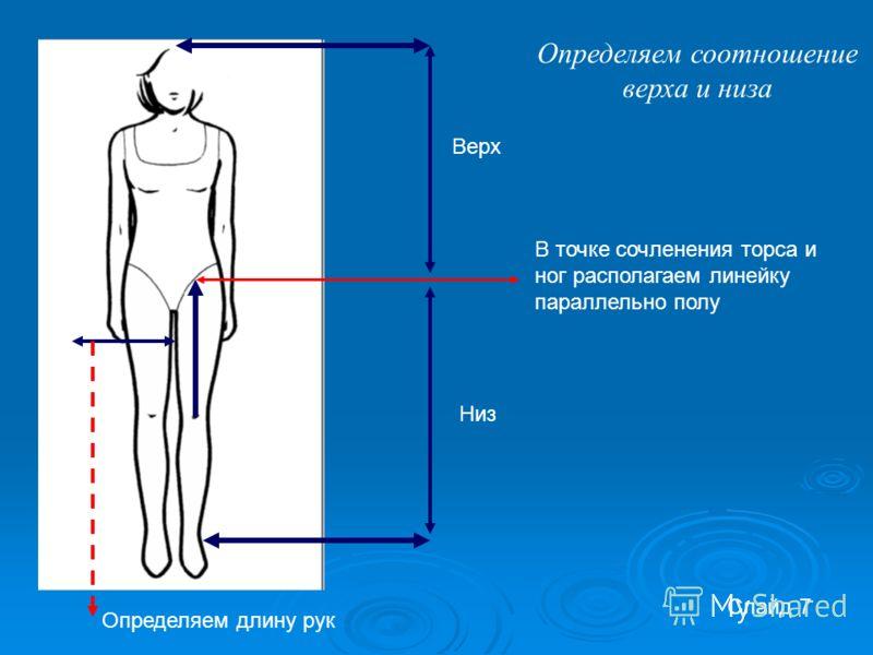 Слайд 7 В точке сочленения торса и ног располагаем линейку параллельно полу Верх Низ Определяем длину рук Определяем соотношение верха и низа