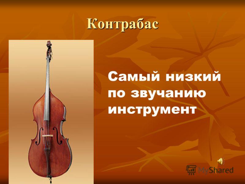 Контрабас Самый низкий по звучанию инструмент