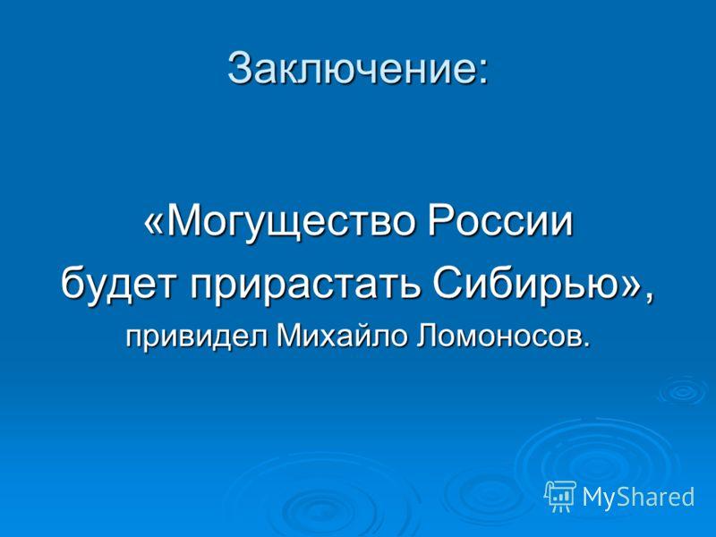Заключение: «Могущество России будет прирастать Сибирью», привидел Михайло Ломоносов.