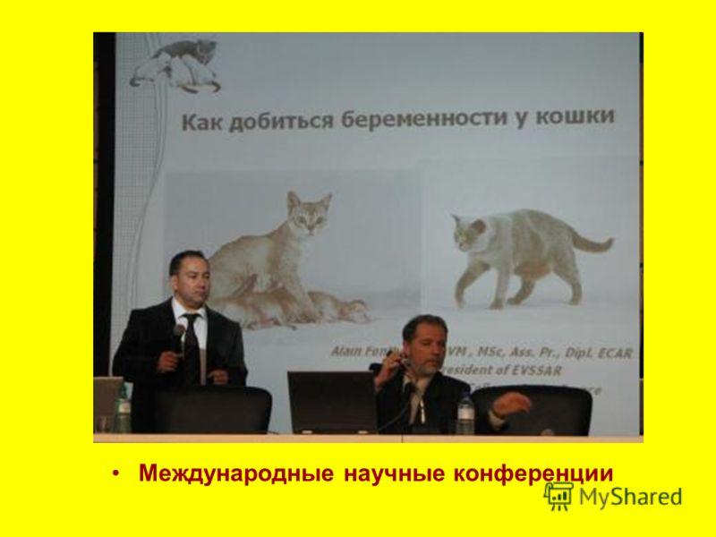 Международные научные конференции