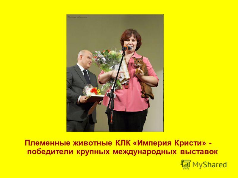 Племенные животные КЛК «Империя Кристи» - победители крупных международных выставок
