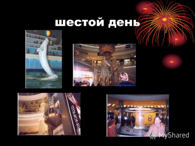 8 ноября Дельфинарий. Вечер в семьях московских друзей и развлечения. «Шопинг»,покупка сувениров. ПРОЩАЙ,СТОЛИЦА!