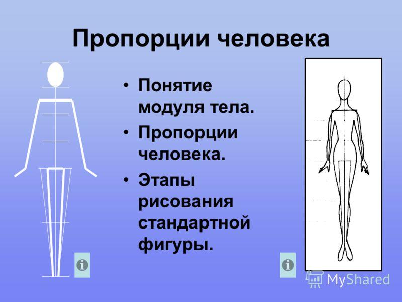 Пропорции человека Понятие модуля тела. Пропорции человека. Этапы рисования стандартной фигуры.