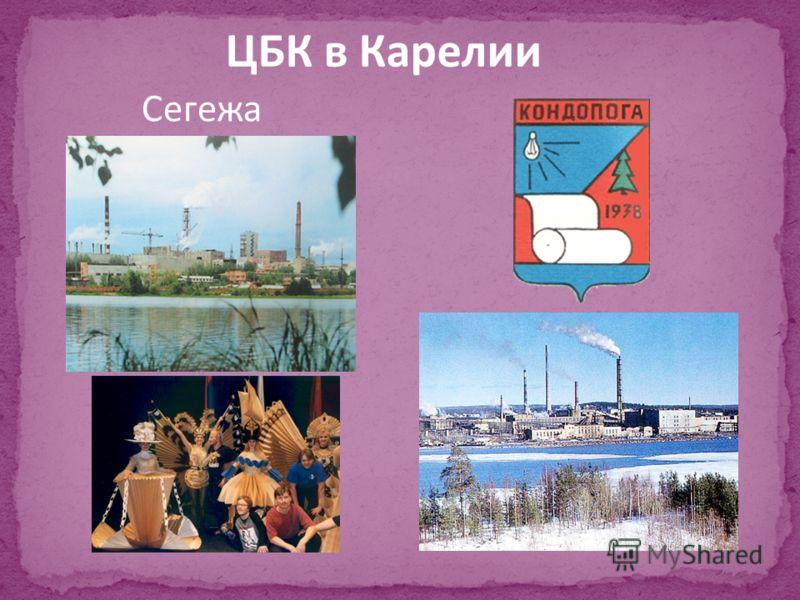Сегежа ЦБК в Карелии