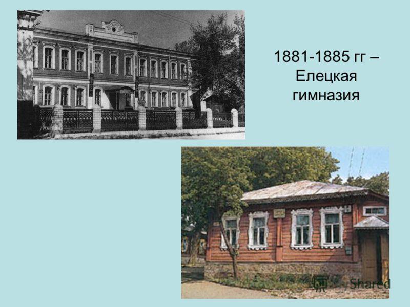 1881-1885 гг – Елецкая гимназия
