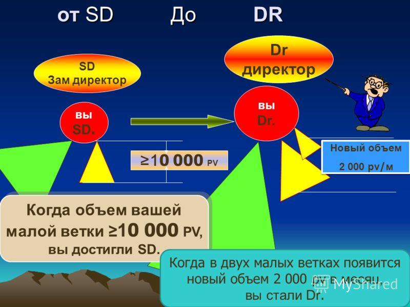 от SD До DR от SD До DR вы SD. вы Dr. 10 000 PV SD Зам директор Новый объем 2 000 pv/м Новый объем 2 000 pv/м Dr директор Когда объем вашей малой ветки 10 000 PV, вы достигли SD. Когда объем вашей малой ветки 10 000 PV, вы достигли SD. Когда в двух м