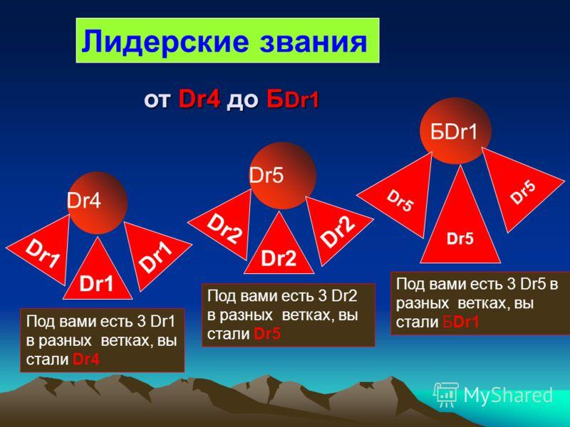 Лидерские звания Dr4 Под вами есть 3 Dr1 в разных ветках, вы стали Dr4 Dr1 Dr5 Под вами есть 3 Dr2 в разных ветках, вы стали Dr5 Dr2 БDr1 Под вами есть 3 Dr5 в разных ветках, вы стали БDr1 Dr5 от Dr4 до Б Dr1