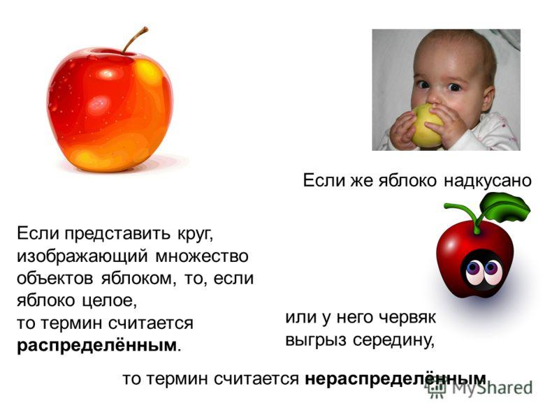 Если представить круг, изображающий множество объектов яблоком, то, если яблоко целое, то термин считается распределённым. Если же яблоко надкусано или у него червяк выгрыз середину, то термин считается нераспределённым