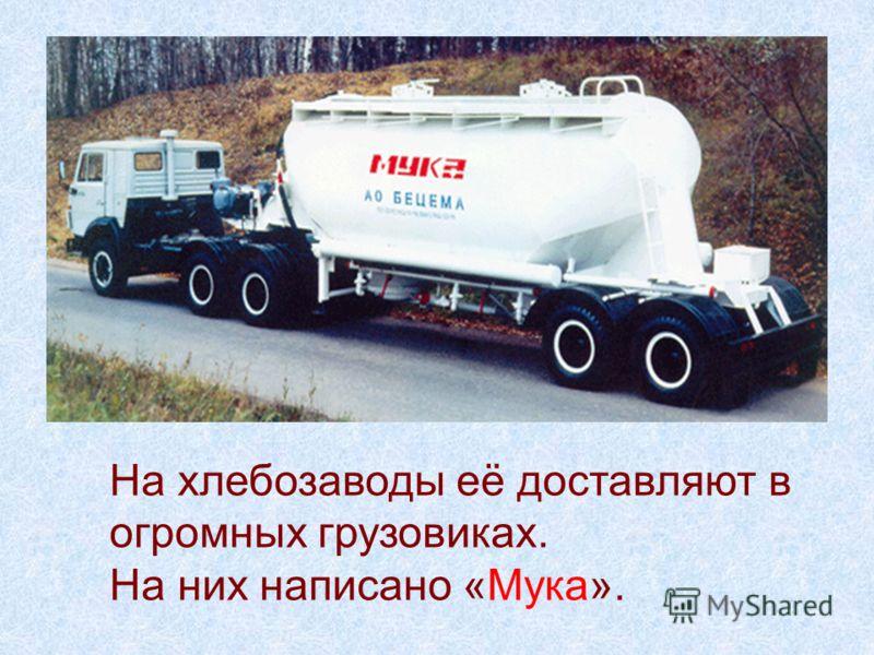 На хлебозаводы её доставляют в огромных грузовиках. На них написано «Мука».