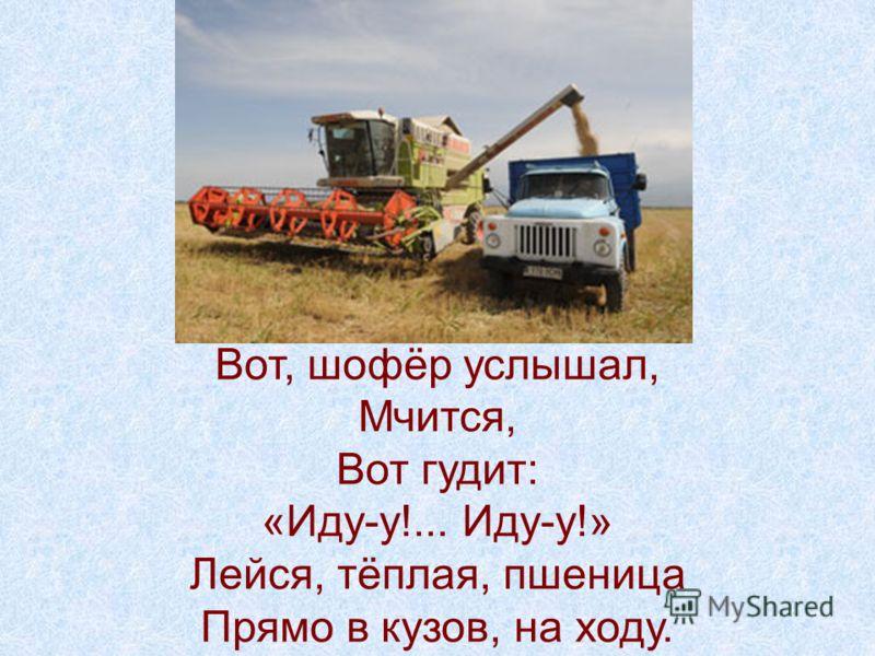 Вот, шофёр услышал, Мчится, Вот гудит: «Иду-у!... Иду-у!» Лейся, тёплая, пшеница Прямо в кузов, на ходу.