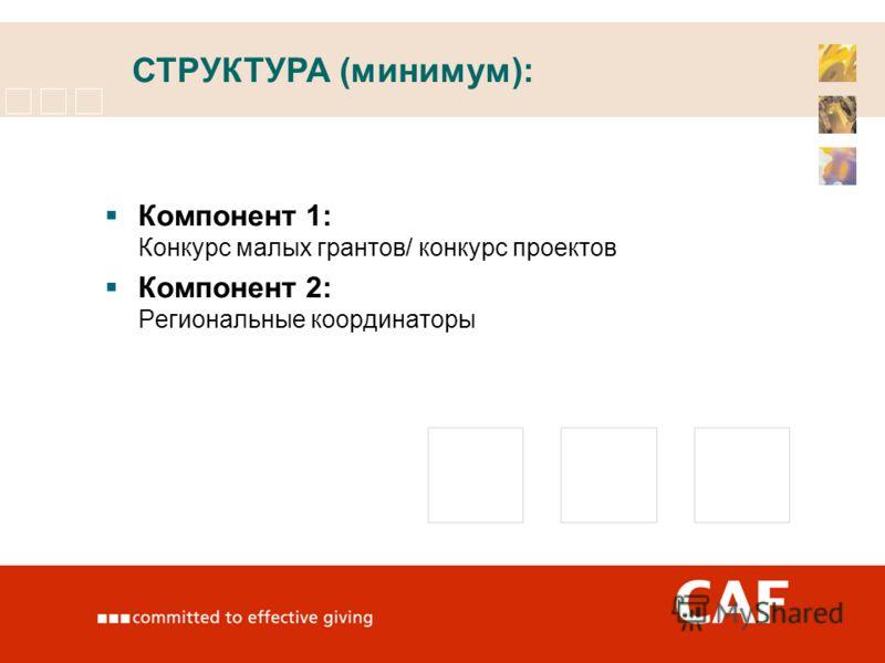 Компонент 1: Конкурс малых грантов/ конкурс проектов Компонент 2: Региональные координаторы СТРУКТУРА (минимум):