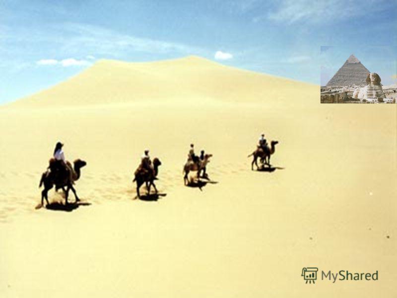 Пътуването до Египет подготви Златка Вълчинова ОУ Шандор Петьофи гр. Хасково E-mail: zvalchinova@abv.bg Благодаря за вниманието!