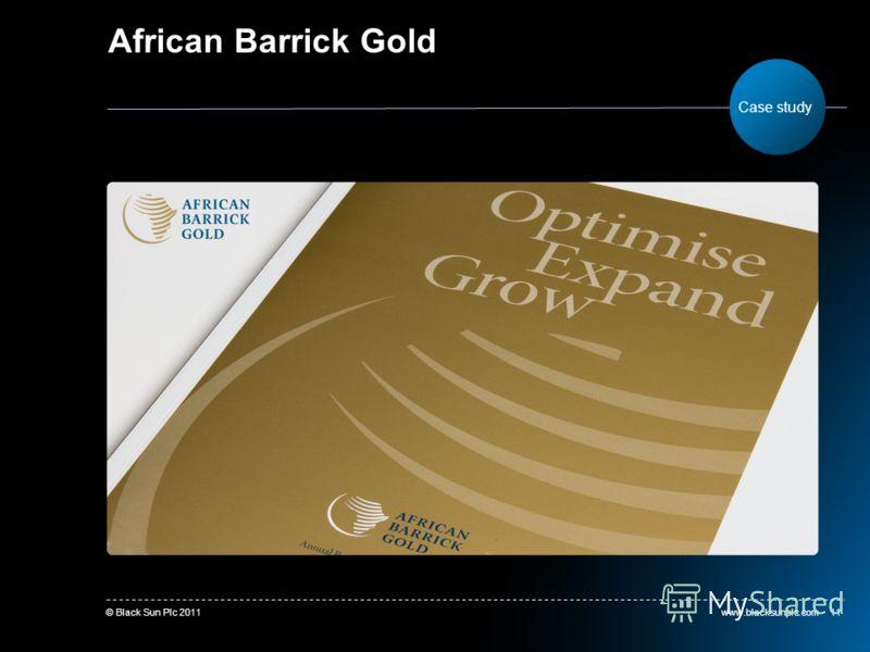 www.blacksunplc.com© Black Sun Plc 201111 African Barrick Gold Case study