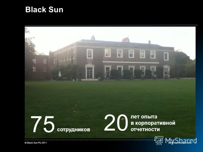 www.blacksunplc.com© Black Sun Plc 20112 Black Sun 75 сотрудников 20 лет опыта в корпоративной отчетности