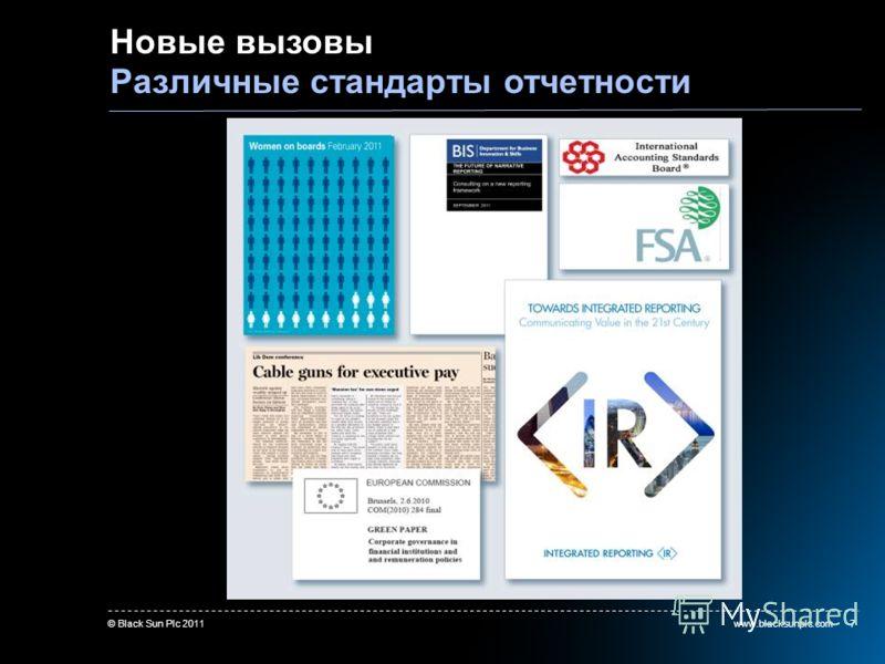 www.blacksunplc.com© Black Sun Plc 20117 Новые вызовы Различные стандарты отчетности more on regulations