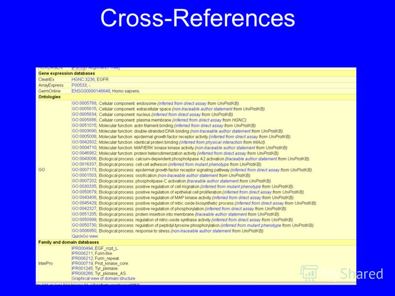 Cross-References